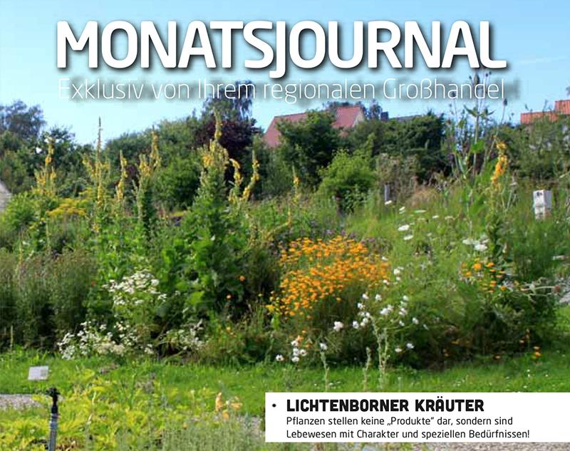 Blogtitel-August-Elkershausen-Journal